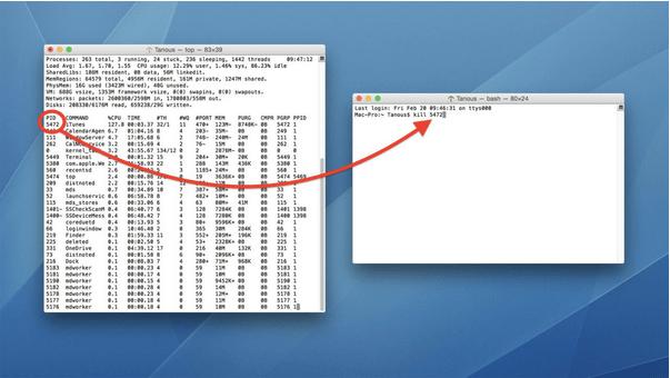 Verwenden des Mac-Terminals