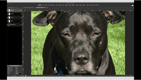 أفضل 5 تطبيقات لتحرير الصور لنظام التشغيل Mac لسنة 2021