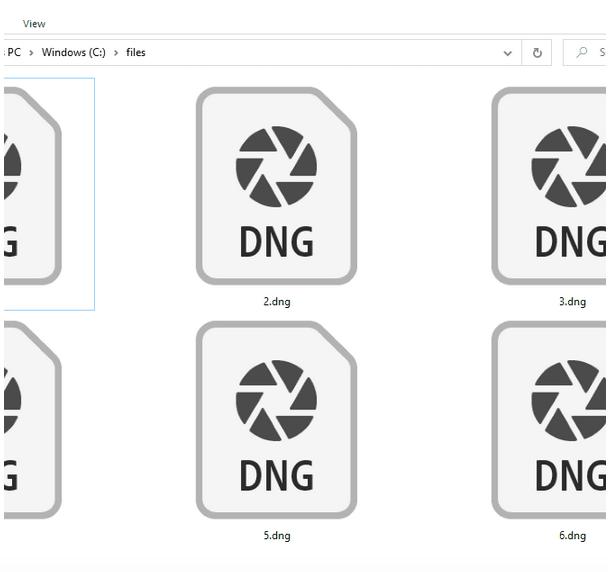 Wiederherstellen von DNG-Dateien unter Windows