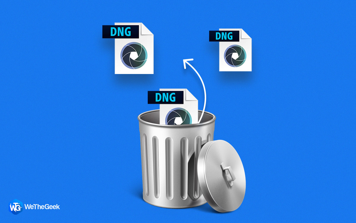 Lost DNG Files? 3 Useful Ways to Recover Deleted DNG Files on Windows